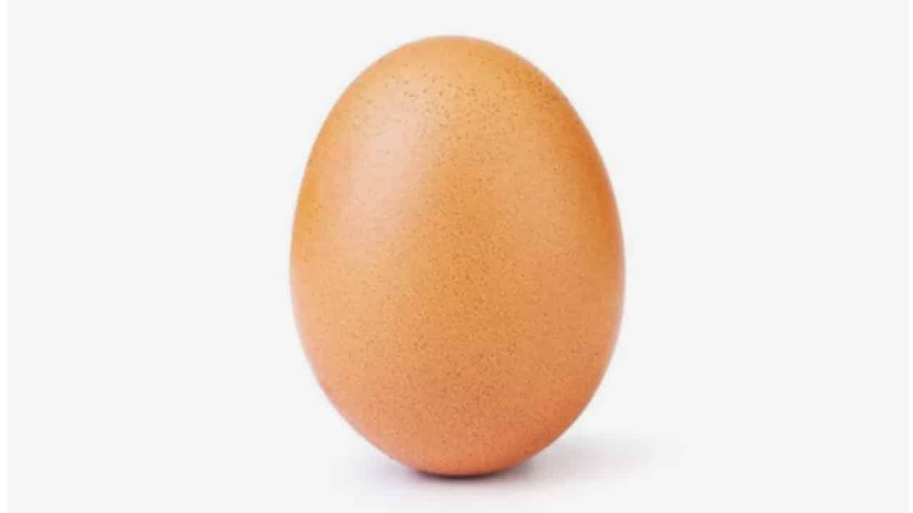 The Instagram Viral Egg